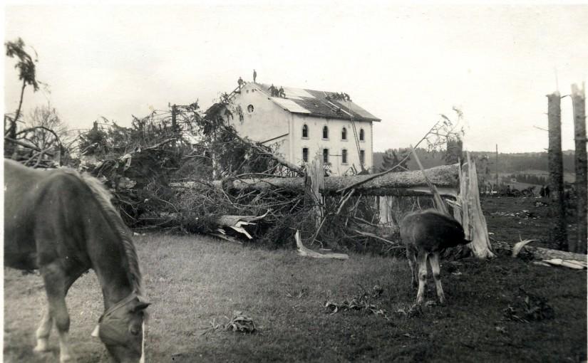 Cyclone et nouveau départ